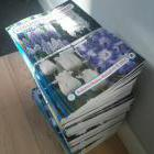 Бумажные каталоги для вас