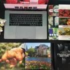 Как создать интернет-магазин для продажи посадочных материалов