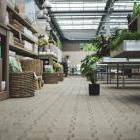 Открыть свой садовый центр - возможно. Все что нужно для этого знать